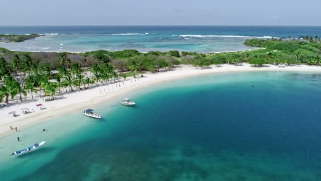 bird's eye view of tropical island beach with coconut trees, sand, waves and turquoise waters - island stock videos & royalty-free footage