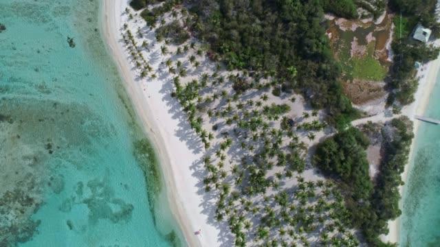 vidéos et rushes de vue d'oiseau de plage tropicale d'île avec des cocotiers, le sable, les vagues et les eaux turquoises - bahamas