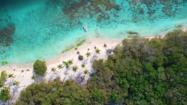 bird's eye view of waves and sand over a caribbean cay with turquoise waters. video taken at cayo peraza at morrocoy national park, venezuela - riva dell'acqua video stock e b–roll