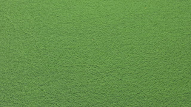 ws aerial ha birds eye view over green field / nebraska, united states - nebraska stock-videos und b-roll-filmmaterial