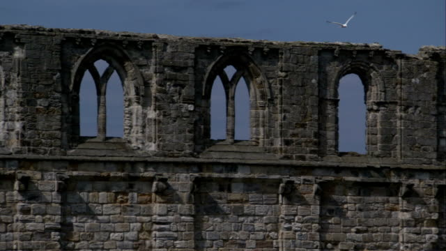Birds fly around and perch along the ruinous arches of an ancient castle. Available in HD.