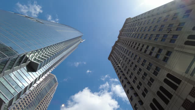 birds fly away from modern buildings in los angeles. - new stock videos & royalty-free footage