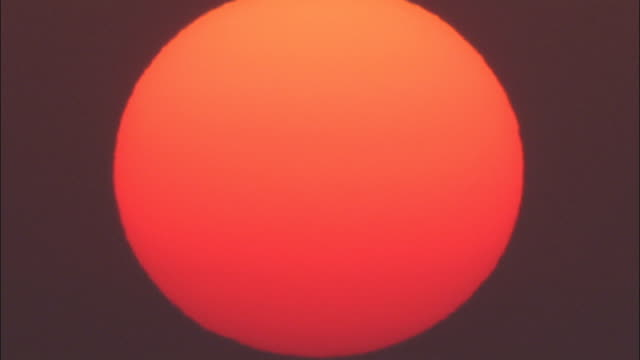 vidéos et rushes de birds fly in front of a huge glowing sun. available in hd. - devant