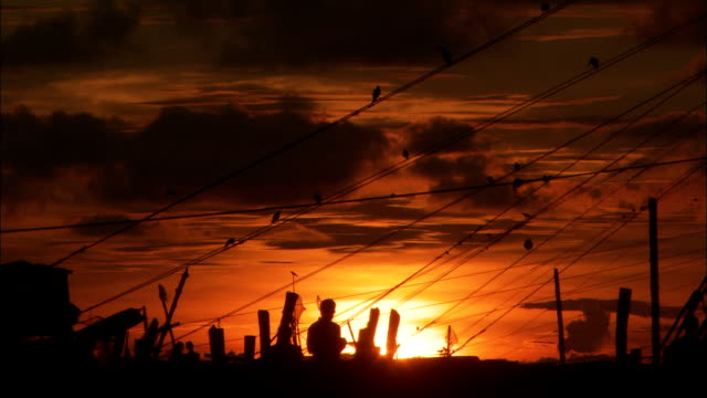 vídeos de stock e filmes b-roll de birds fly over chinese cantilever fishing nets at sunset available in hd. - rede de pesca comercial
