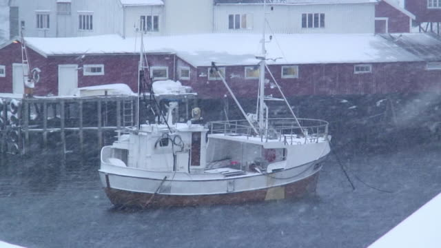 WS ZO Birds flying above fishing boat anchored in sea during blizzard / Tind, Lofoten, Norway
