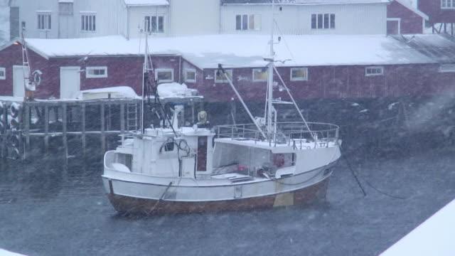 ws zo birds flying above fishing boat anchored in sea during blizzard / tind, lofoten, norway - ankrad bildbanksvideor och videomaterial från bakom kulisserna