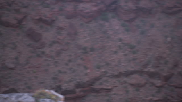 birds flying gliding across valley canyon chasm zo ws revealing cliffs w/ stratification parallel layers of geologic materials flat desert landscape... - colorado plateau stock videos & royalty-free footage
