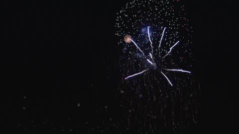 vídeos y material grabado en eventos de stock de ws birds flying near firework display at night - fuegos artificiales