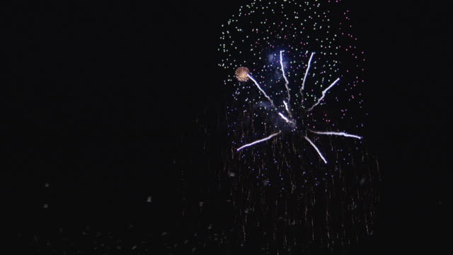 ws birds flying near firework display at night - knallkörper stock-videos und b-roll-filmmaterial