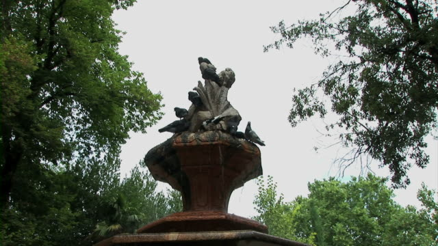 birds on fountain - medium group of animals stock videos & royalty-free footage
