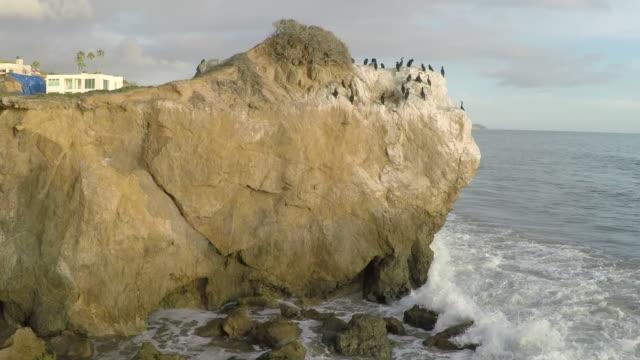 birds on the rock on malibu beach,california - modern rock stock videos & royalty-free footage
