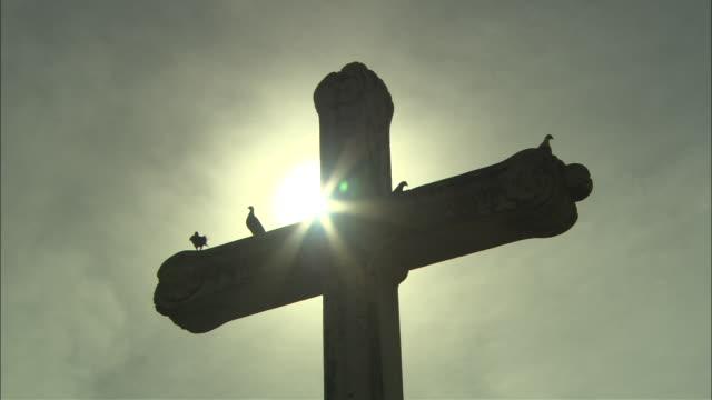 birds perch on a backlit cross, - religion stock-videos und b-roll-filmmaterial