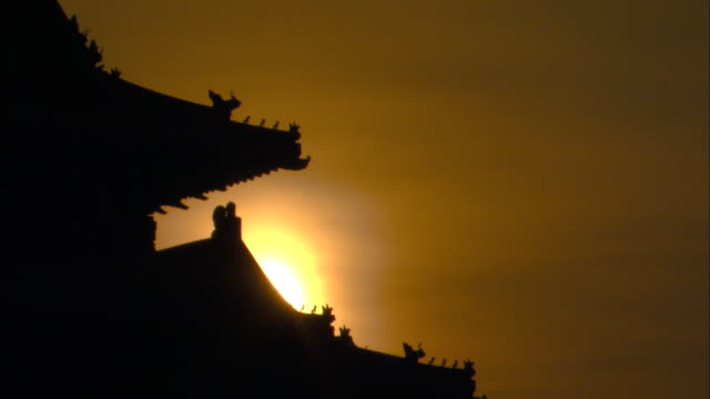 birds perch on palace rooftops in the forbidden city. - forbidden city stock videos & royalty-free footage