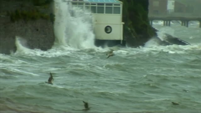 birds struggling to fly during storm ophelia off the coast of wales - danger stock videos & royalty-free footage