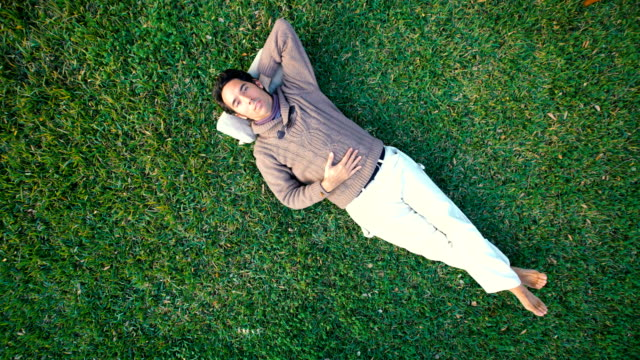 bird´s-eye shot of one young resting over the garden grass - sdraiato video stock e b–roll