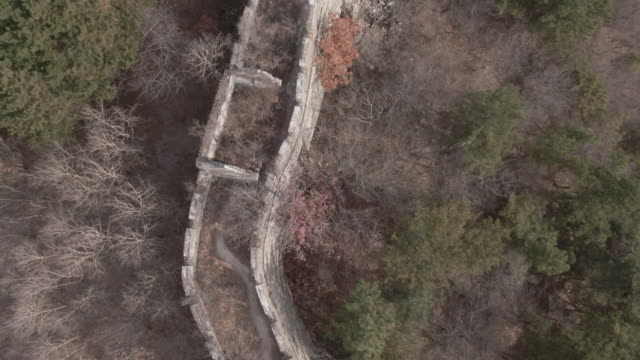 birdseye view aerial drone shot of the great wall of china in beijing china - aerial or drone pov or scenics or nature or cityscape stock-videos und b-roll-filmmaterial