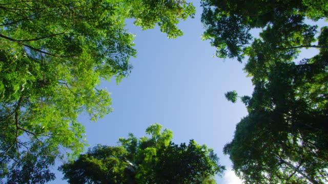 A birds-eye-view shot of sky