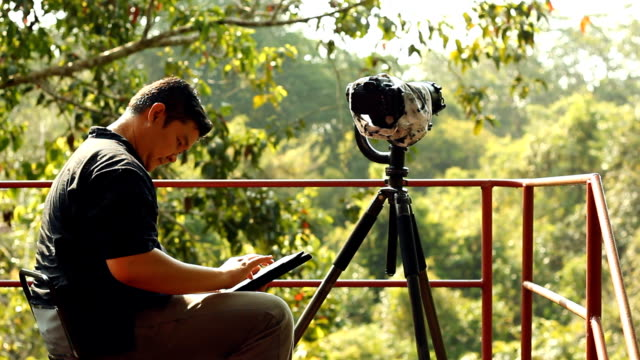 birdwatcher sending email - binoculars stock videos & royalty-free footage