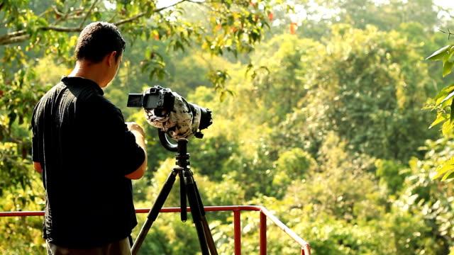 vídeos de stock e filmes b-roll de birdwatcher enviar e-mail - observar pássaros