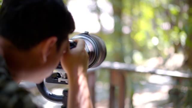 vídeos de stock e filmes b-roll de birdwatcher taking photo of bird - observar pássaros