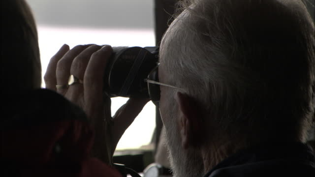 birdwatchers peer through binoculars in hide, norfolk, uk - canocchiale video stock e b–roll