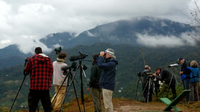 birdwatchers watching birds,batumi , georgia, caucasus - バードウォッチング点の映像素材/bロール