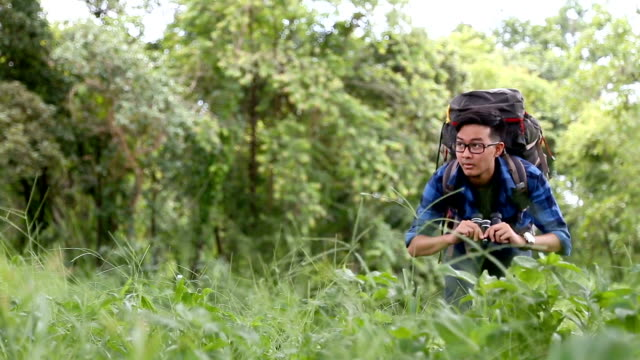 birdwatching. excited young man birdwatcher use binolcular in rain forest background. chiang mai, thailand. - osservare gli uccelli video stock e b–roll