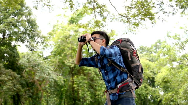 birdwatching. excited young man birdwatcher use binolcular in rain forest background. chiang mai, thailand. - bird watching stock videos & royalty-free footage