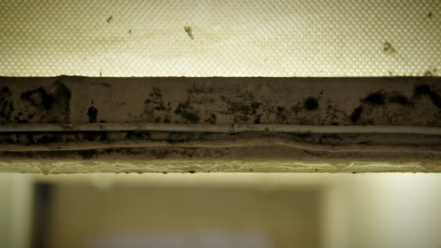 birmingham city council admits flats are no longer fit for purpose; england: london: lewisham: int gvs medhi sheikh wiping dirt from wall mould on... - sofa stock videos & royalty-free footage