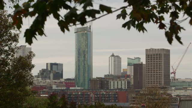 birmingham skyline. - 2014 stock videos and b-roll footage