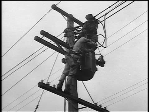 black and white 1944 low angle two repairmen working on telephone pole / documentary - telefonledning bildbanksvideor och videomaterial från bakom kulisserna