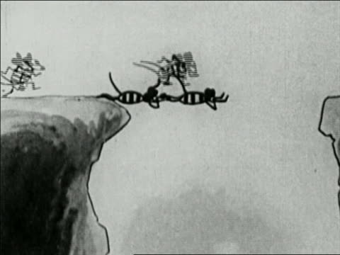 vídeos de stock e filmes b-roll de 1929 black and white animation mice working as a team and forming bridge over high cliffs  / audio - cooperação
