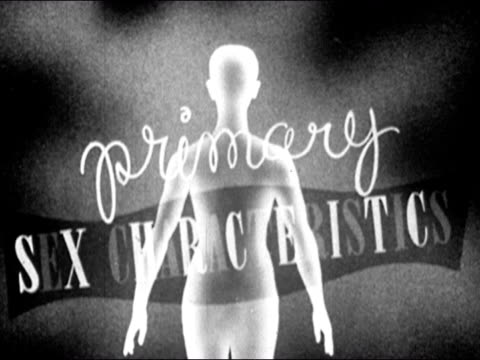 1953 black and white animation of the words primary sex characteristics written over body of adloscent boy / signs pointing out the testes and penis / audio - anatomy stock videos & royalty-free footage