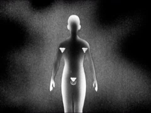 1953 black and white animation of the words secondary sex characteristics over illustration of adolescent boy / animation of hair and muscle growth / shoulders broadening / voice changing / audio - brusthaar stock-videos und b-roll-filmmaterial