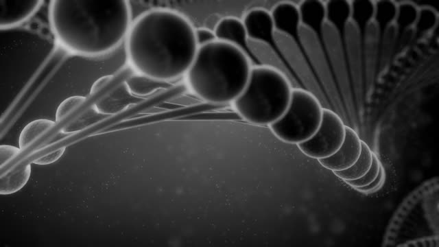black and white dna string - grayscale stock videos and b-roll footage