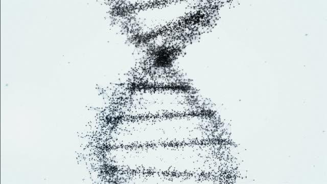 ブラックとホワイトの dna - らせん点の映像素材/bロール
