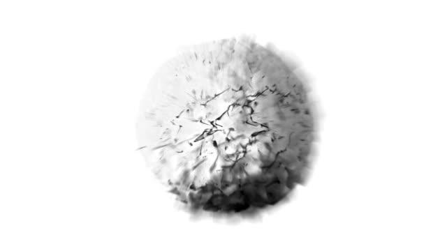 SEMINATURAL wijziging van de bol: zwart-wit (LOOP)