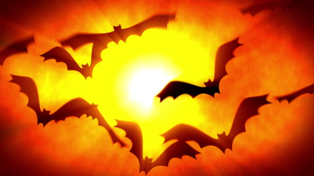 black bats are flying in a ray of spooky light. halloween background. 60 seconds loop cg. 16 bit rgb. - pumpkin stock videos & royalty-free footage