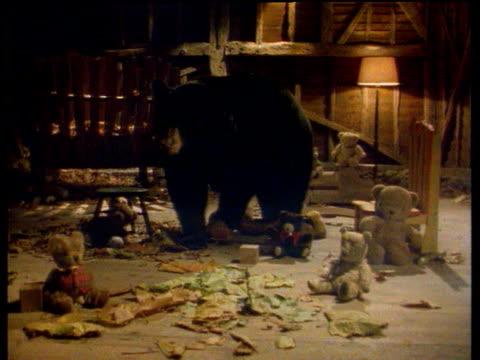 vídeos y material grabado en eventos de stock de black bear looking around at teddy bears in play room - fantasía