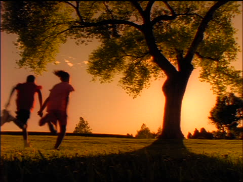rear view silhouette black boy + girl holding hands + running towards tree at sunset - teenagerpaar stock-videos und b-roll-filmmaterial