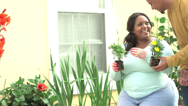 black couple planting flowers in garden - body positive stock videos and b-roll footage