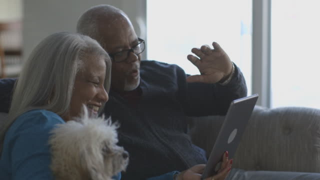 black couple video chatting on digital tablet - pets stock videos & royalty-free footage