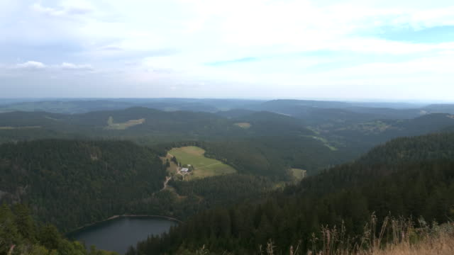black forest germany - schwarzwald stock-videos und b-roll-filmmaterial