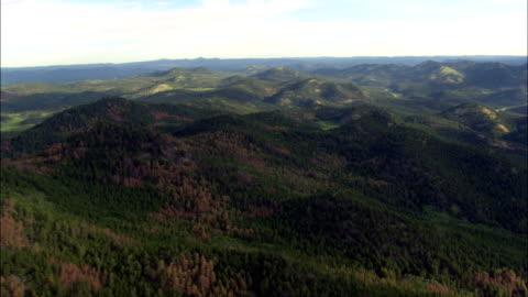 vídeos de stock, filmes e b-roll de black hills floresta nacional - vista aérea - dakota do sul, no condado de pennington, estados unidos - dakota do sul