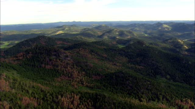 black hills national forest  - aerial view - south dakota,  pennington county,  united states - south dakota stock videos & royalty-free footage