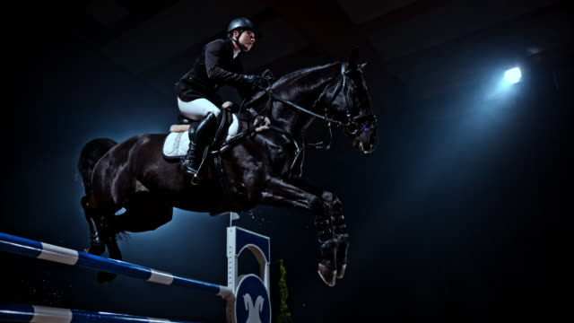 slo mo black horse jumping a rail with his rider - horse stock videos & royalty-free footage