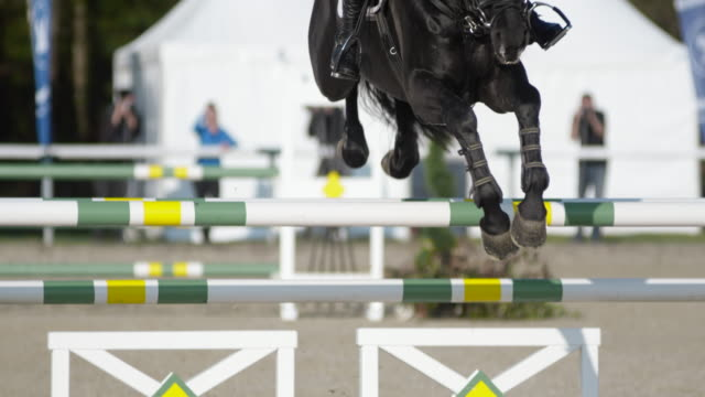 slo mo black horse jumping obstacles with it's female rider - 乗る点の映像素材/bロール