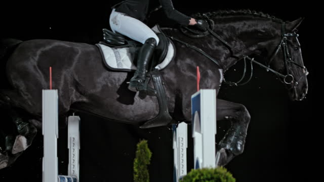 SLO MO Black horse jumping the oxer with his rider at night