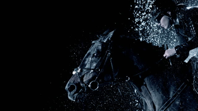 slo mo black horse jumping through a waterfall with a female rider - bridle stock videos & royalty-free footage
