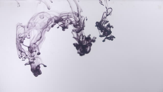 Black Ink Flowing In Water On White Background Stock Footage